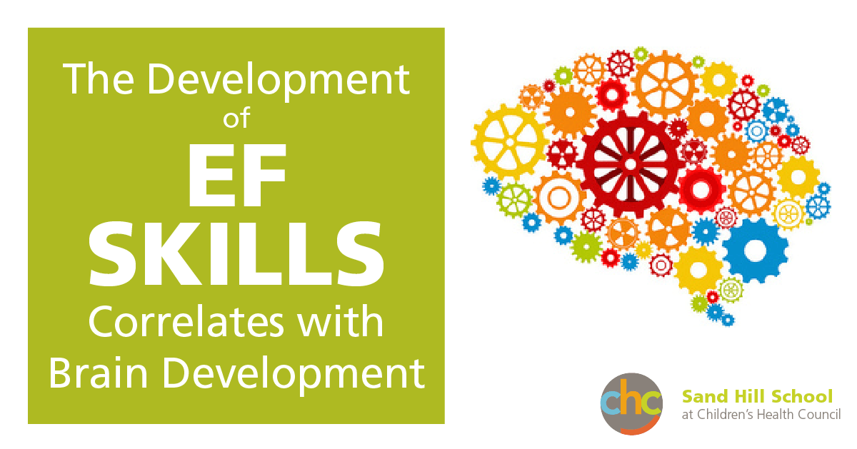 The development of Executive Functioning skills correlates with brain development