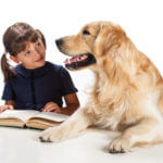 child reads book to dog