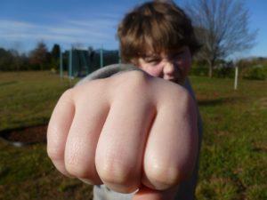 fist-bully-933916_1280
